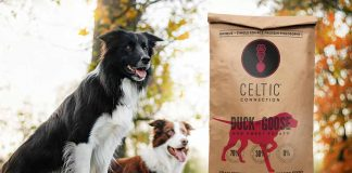 Celtic Connection Dogs food