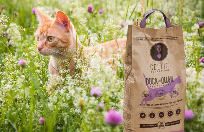 Celtic Connection catfood